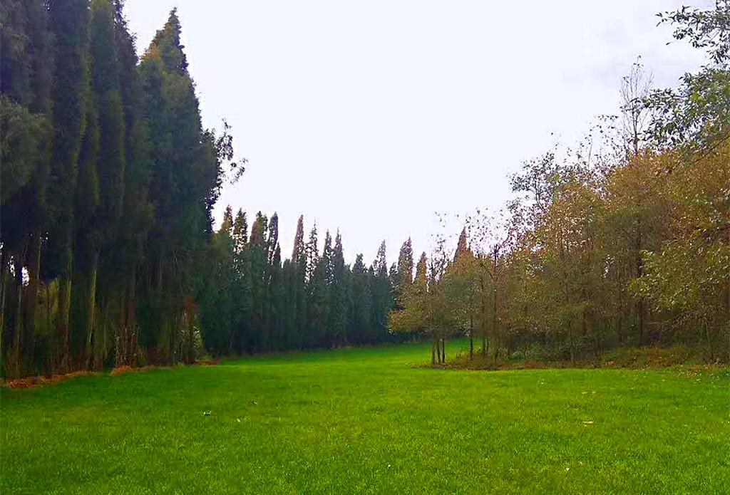 LNT户外露营活动@森林牧场-砚台山